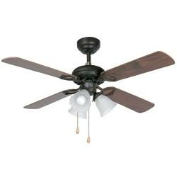 Ventilatore da soffitto...